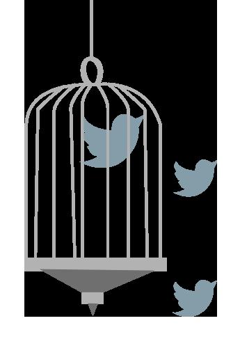 social-warning-movimento-etico-educazione-digitale-sexting-cyberbullismo-grafica-uccelli2